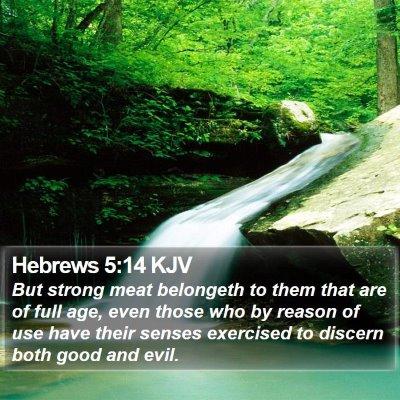 Hebrews 5:14 KJV Bible Verse Image