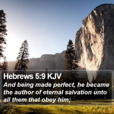 Hebrews 5:9 KJV Bible Verse Image