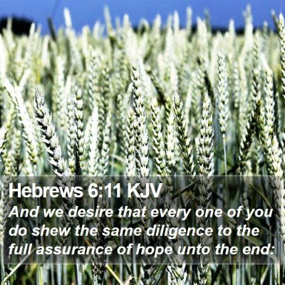 Hebrews 6:11 KJV Bible Verse Image
