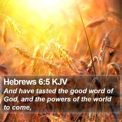 Hebrews 6:5 KJV Bible Verse Image