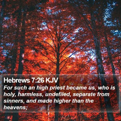 Hebrews 7:26 KJV Bible Verse Image