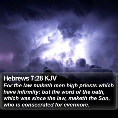 Hebrews 7:28 KJV Bible Verse Image