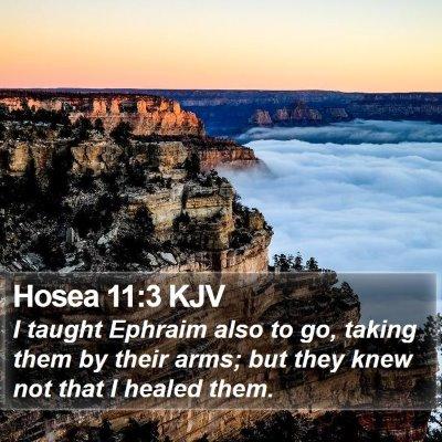 Hosea 11:3 KJV Bible Verse Image