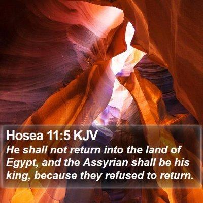Hosea 11:5 KJV Bible Verse Image