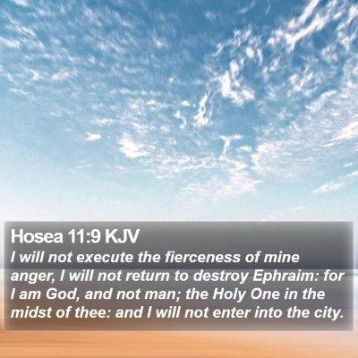 Hosea 11:9 KJV Bible Verse Image