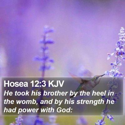Hosea 12:3 KJV Bible Verse Image