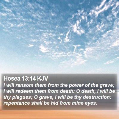 Hosea 13:14 KJV Bible Verse Image