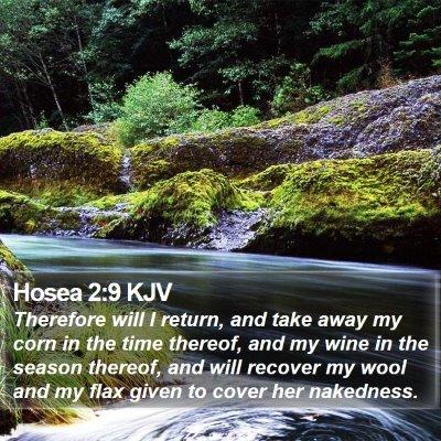 Hosea 2:9 KJV Bible Verse Image