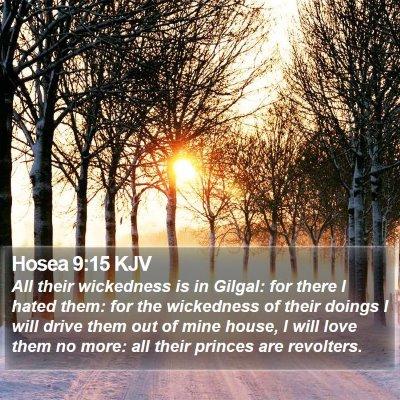 Hosea 9:15 KJV Bible Verse Image