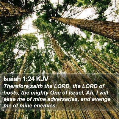 Isaiah 1:24 KJV Bible Verse Image