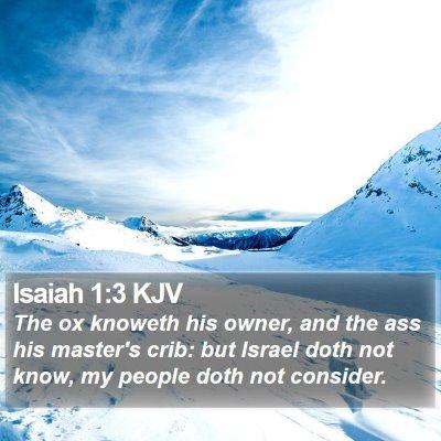 Isaiah 1:3 KJV Bible Verse Image