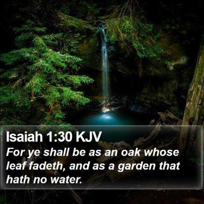 Isaiah 1:30 KJV Bible Verse Image
