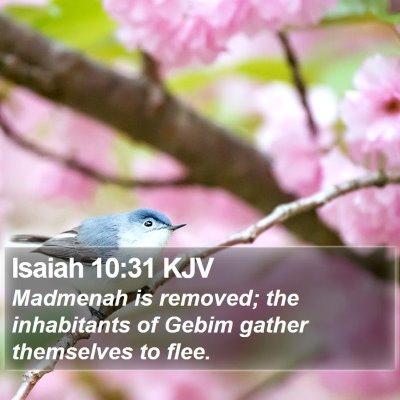 Isaiah 10:31 KJV Bible Verse Image
