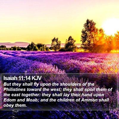 Isaiah 11:14 KJV Bible Verse Image