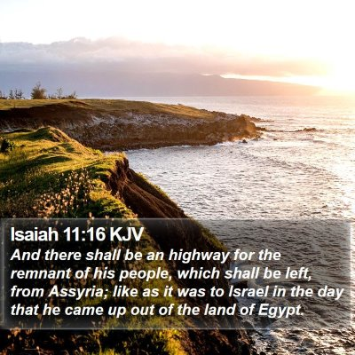 Isaiah 11:16 KJV Bible Verse Image