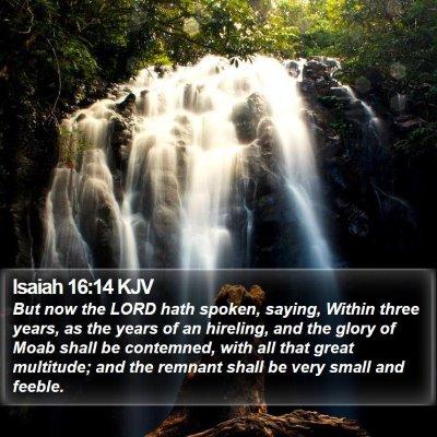 Isaiah 16:14 KJV Bible Verse Image