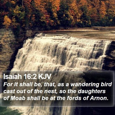 Isaiah 16:2 KJV Bible Verse Image