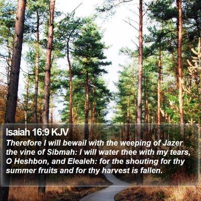 Isaiah 16:9 KJV Bible Verse Image