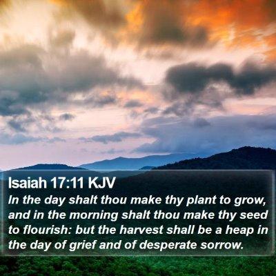 Isaiah 17:11 KJV Bible Verse Image