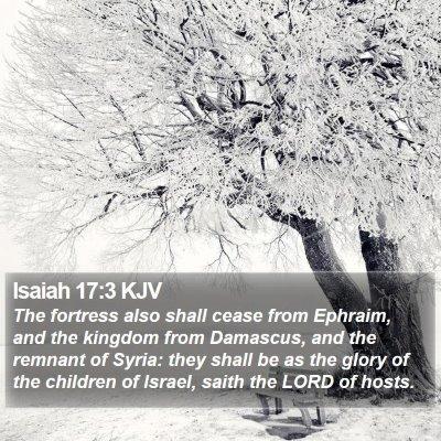 Isaiah 17:3 KJV Bible Verse Image