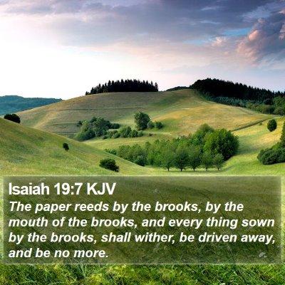 Isaiah 19:7 KJV Bible Verse Image