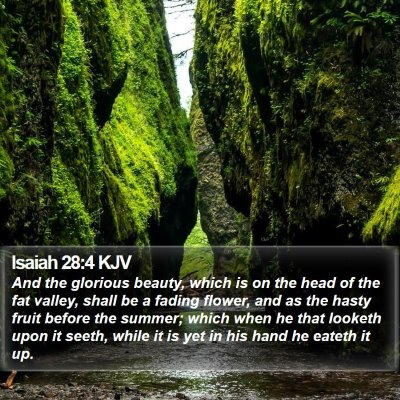 Isaiah 28:4 KJV Bible Verse Image