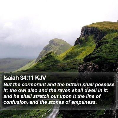 Isaiah 34:11 KJV Bible Verse Image