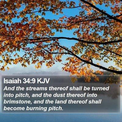 Isaiah 34:9 KJV Bible Verse Image