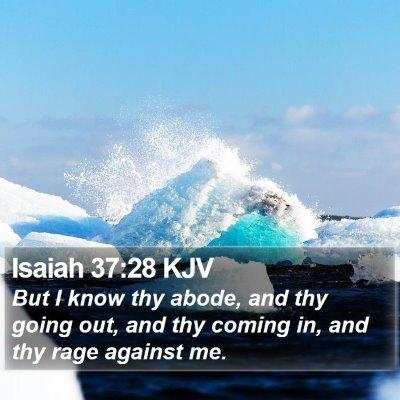 Isaiah 37:28 KJV Bible Verse Image