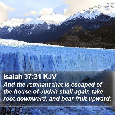 Isaiah 37:31 KJV Bible Verse Image