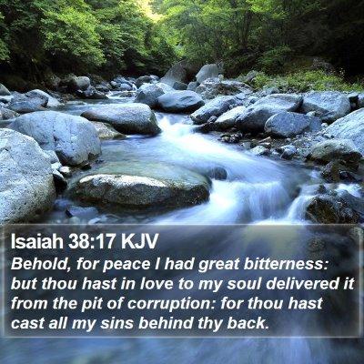 Isaiah 38:17 KJV Bible Verse Image
