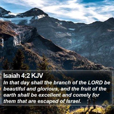 Isaiah 4:2 KJV Bible Verse Image