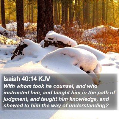 Isaiah 40:14 KJV Bible Verse Image