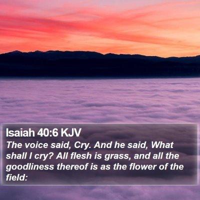 Isaiah 40:6 KJV Bible Verse Image