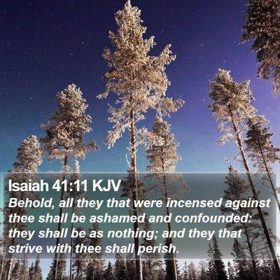 Isaiah 41:11 KJV Bible Verse Image