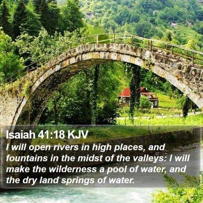 Isaiah 41:18 KJV Bible Verse Image