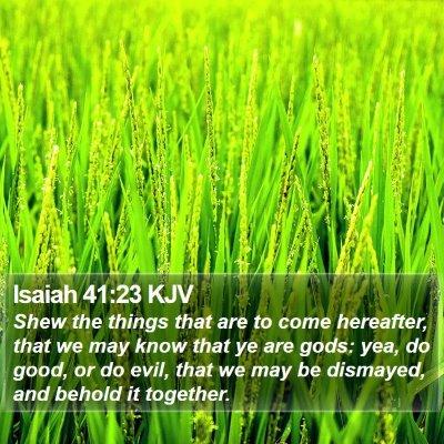 Isaiah 41:23 KJV Bible Verse Image