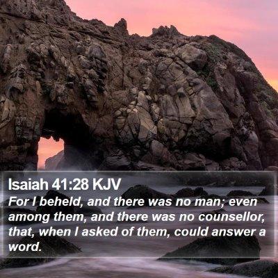 Isaiah 41:28 KJV Bible Verse Image