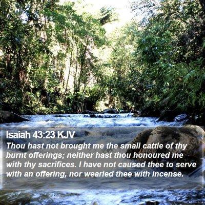 Isaiah 43:23 KJV Bible Verse Image