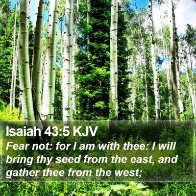 Isaiah 43:5 KJV Bible Verse Image