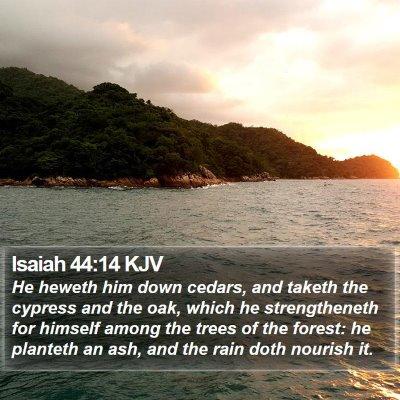 Isaiah 44:14 KJV Bible Verse Image