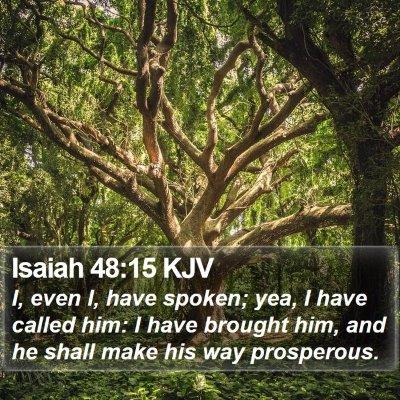 Isaiah 48:15 KJV Bible Verse Image