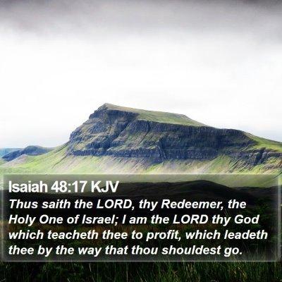 Isaiah 48:17 KJV Bible Verse Image