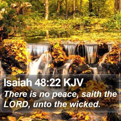 Isaiah 48:22 KJV Bible Verse Image