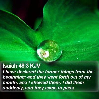 Isaiah 48:3 KJV Bible Verse Image