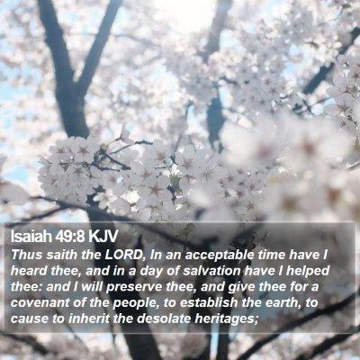 Isaiah 49:8 KJV Bible Verse Image