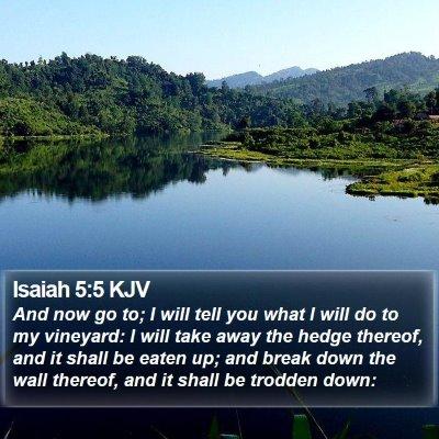 Isaiah 5:5 KJV Bible Verse Image