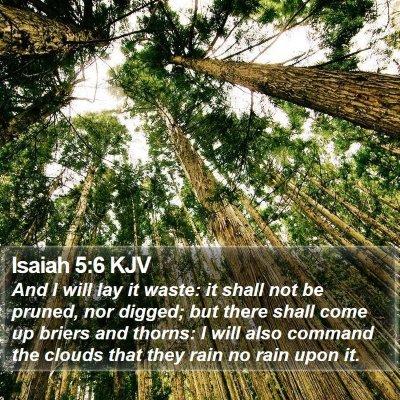 Isaiah 5:6 KJV Bible Verse Image