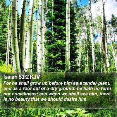 Isaiah 53:2 KJV Bible Verse Image