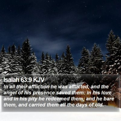 Isaiah 63:9 KJV Bible Verse Image